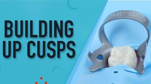Posterior Dental Training Videos